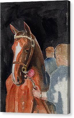 Hip No. 61 Chestnut Colt Canvas Print by Arline Wagner