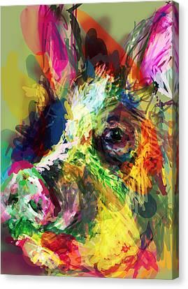 Hog Canvas Print by James Thomas