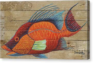 Hogfish Canvas Print