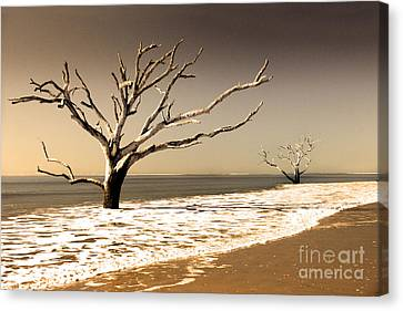 Canvas Print featuring the photograph Hold The Line by Dana DiPasquale