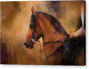 Bay Horse Canvas Print - Hold Your Head High Horse Art by Jai Johnson