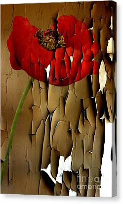 Rememberance Canvas Print - Holding On by Clare Bevan