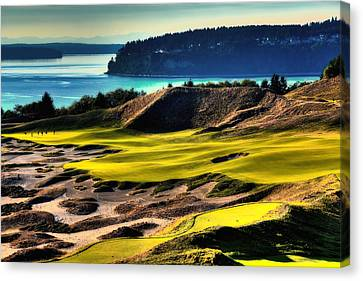 Hole #14 At Chambers Bay Canvas Print by David Patterson