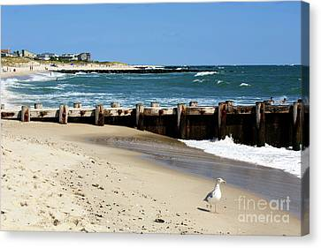 Canvas Print featuring the photograph Holgate Beach 2006 by John Rizzuto