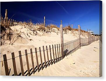 Canvas Print featuring the photograph Holgate Dune Fence by John Rizzuto