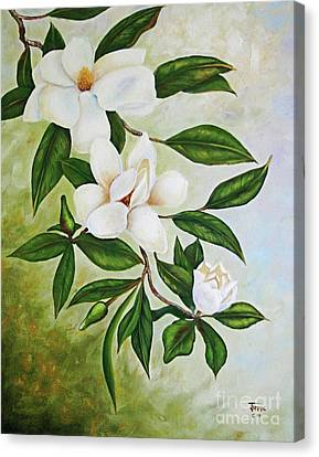 Holiday Magnolias Canvas Print by Jimmie Bartlett