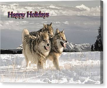 Holiday Pack Canvas Print by Wildlife Fine Art