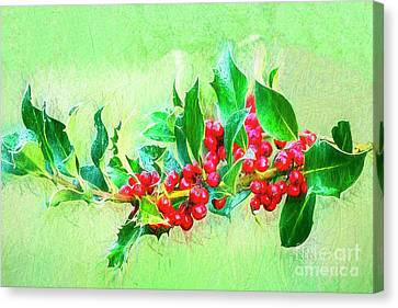 Canvas Print featuring the photograph Holly Berries Photo Art by Sharon Talson