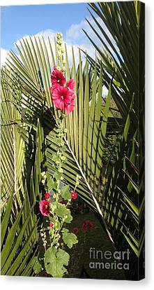 Holly Hock On Palm Leaves Canvas Print by Karen Moren