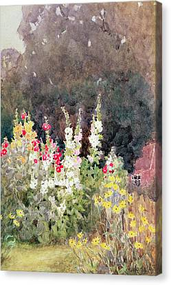 Hollyhocks Canvas Print by Helen Allingham