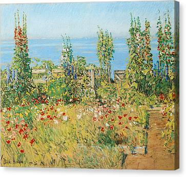 Hollyhocks Isles Of Shoals Canvas Print by Childe Hassam