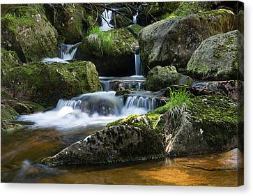 Holtemme, Harz Canvas Print by Andreas Levi