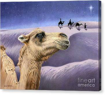 Camel Canvas Print - Holy Night by Sarah Batalka