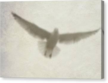 Holy Spirit Canvas Print by Vienne Rea