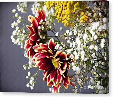Holy Week Flowers 2017 5 Canvas Print by Sarah Loft