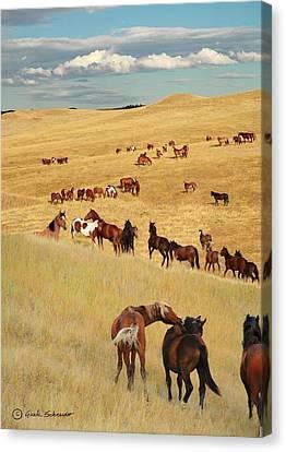 Giselaschneider Canvas Print - Home On The Range ... Montana Art Photo by GiselaSchneider MontanaArtist