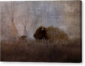 Home On The Range Canvas Print by Ron Jones