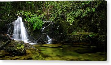 Homesite Falls Autumn Serenity Wide Canvas Print