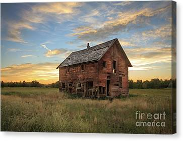 Haybales Canvas Print - Homestead by Robert Bales