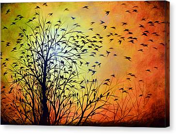 Homeward Canvas Print by Amy Giacomelli