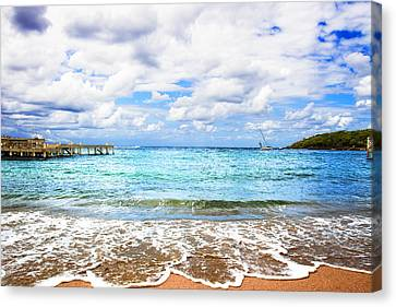 Honduras Beach Canvas Print by Marlo Horne