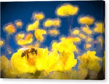 Honey Bee Mountain Daisy Impressionism Study 1 Canvas Print by Scott Campbell