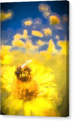 Honey Bee Mountain Daisy Impressionism Study 2 Canvas Print by Scott Campbell