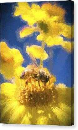 Painterly Canvas Print - Honey Bee Mountain Daisy Impressionism Study 3 by Scott Campbell