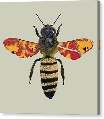 Honey Bee Canvas Print by Sarah Hough