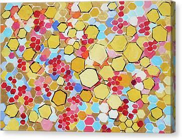 Honeycomb 201755 Canvas Print by Alyse Radenovic