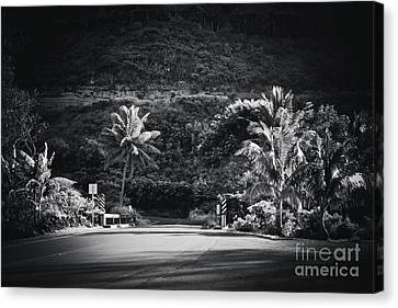 Canvas Print featuring the photograph Honokohau Maui Hawaii by Sharon Mau