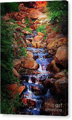 Honor Heights Park Hidden Stream Canvas Print by Tamyra Ayles