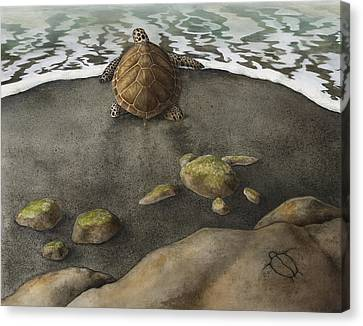 Honu Beach Canvas Print by Kirsten Carlson