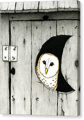 Hoo Tooted Canvas Print by Don McMahon