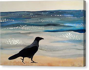 Hooded Crow At The Black Sea By Dora Hathazi Mendes Canvas Print by Dora Hathazi Mendes