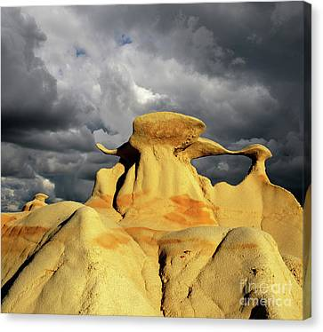 Canvas Print featuring the photograph Hoodoo You Love? by Bob Christopher