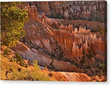 Canvas Print featuring the photograph Hoodoos At Sunrise by Stephen  Vecchiotti
