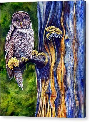 Hoo's Look'n Canvas Print by JoLyn Holladay