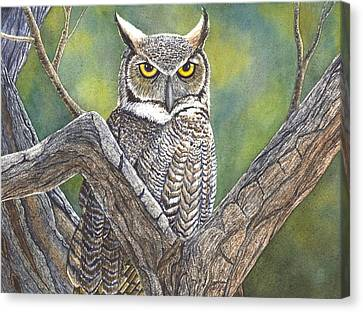 Hooter Canvas Print by Catherine G McElroy