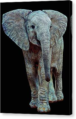 Canvas Print - Hope For The Future by Michael Durst