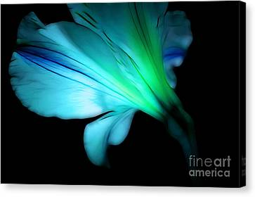 Floral Digital Art Canvas Print - Hope Is On The Way by Krissy Katsimbras