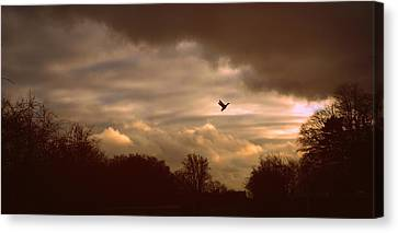 Canvas Print featuring the photograph Hope by Jessica Jenney