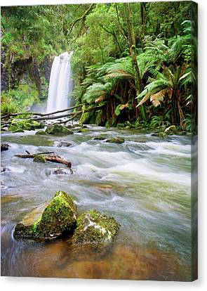Hopetoun Falls Canvas Print