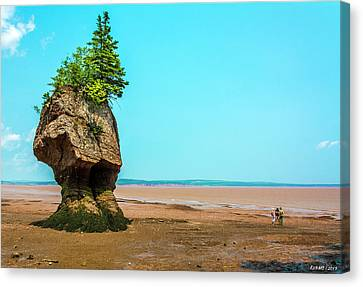 Hopewell Rocks In New Brunswick -  Canada Canvas Print