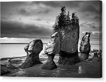 Canvas Print featuring the photograph Hopewell Rocks by Patrick Downey