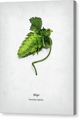 Beer Canvas Print - Hops by Mark Rogan