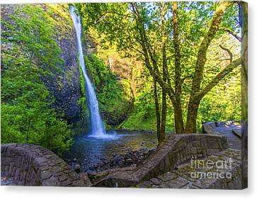Canvas Print featuring the photograph Horesetail Falls by Jonny D