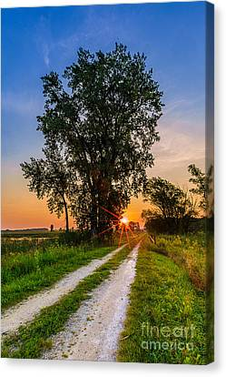 Horicon Trails Canvas Print by Andrew Slater