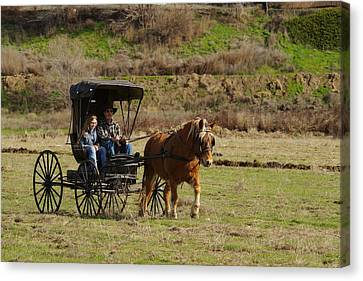 Horse And Buggy Canvas Print by Jeff Swan