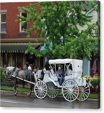 Canvas Print featuring the photograph Horse And White Buggy by Nancy Bradley